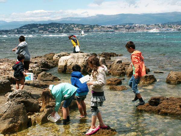 Un archipel au large de Cannes 92