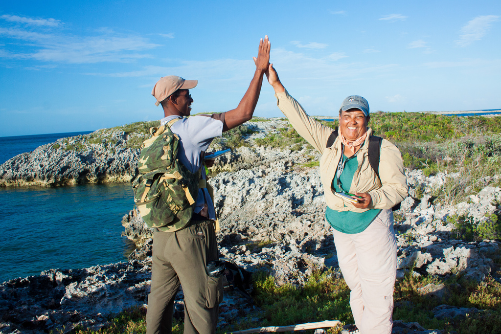 Island Conservation sur Allen Cay 151