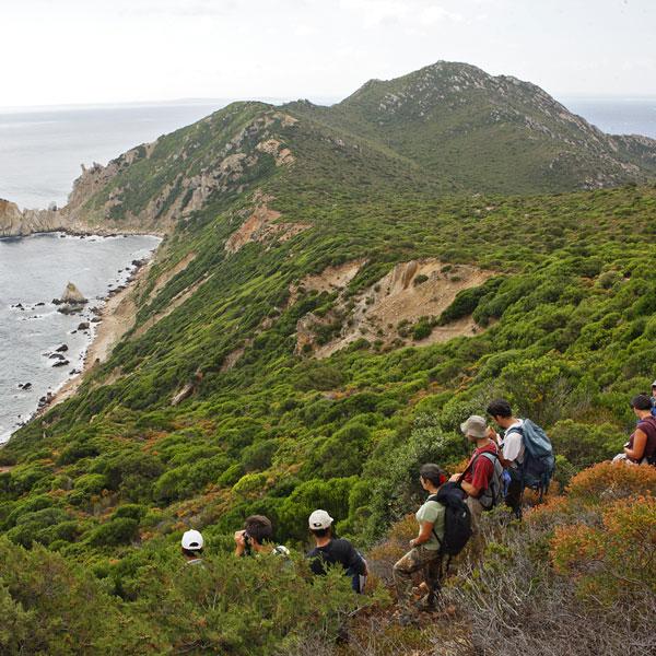 Une équipe d'experts de l'Initiative PIM débarque sur Zembra en Tunisie pour une série d'inventaires naturalistes.